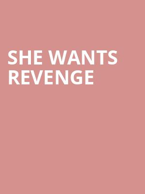 She Wants Revenge at Diesel Club Lounge