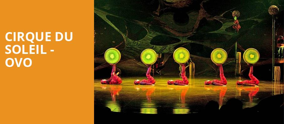 Cirque Du Soleil Ovo, PPG Paints Arena, Pittsburgh